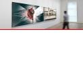 Plexi'Art  - <p>La technologie Plexi'Art est innovante et très tendance : elle combine l'impression sur verre acrylique et le contrecollage d'un Alu Dibond.</p>