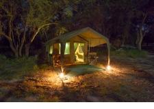 SAFARI PHOTO AU BOTSWANA - <p>Le Botswana est sans doute l'un des derniers sanctuaires animaliers africains sauvages.</p> <p>Sa richesse animale permet de réaliser un safari photo d'exception. Notre connaissance du terrain, la qualité de nos équipes locales, de nos guides botswanais et de nos accompagnateurs sont vos meilleures garanties pour réaliser de belles images lors des plus belles lumières africaines.</p> <p>Le Botswana se découvre sous tente pour des ambiances inoubliables.</p>