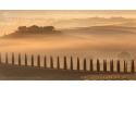"""VOYAGE PHOTO EN TOSCANE avec un photographe pro - <p>Au cours d'un voyage photo qui vous emmènera dans 5 sites patrimoine mondial de l'UNESCO, vous passerez plusieurs jours au milieu des collines toscanes, mais aussi dans les principaux spots photos de la région: villages médiévaux mystérieux, Sienne l'éternelle, le Chianti et bien sûr...les meilleurs coins du """"Crete Senesi"""" !</p>"""