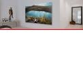 Plexi'Light  - <p>La technologie Plexi'Light est la solution économique du Plexi'Art : la différence est qu'elle combine l'impression sur verre acrylique et le contrecollage d'un PVC (Forex).</p>