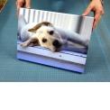 JetMaster®, système d'affichage rapide - <p>Lancé par Innova Art en 2010 pour compléter sa fameuse gamme fine art<br />pour impression numérique, le système JetMaster® permet de mettre en<br />relief des images avec une simplicité étonnante. Peu après son<br />lancement, le système de d'encadrement carton JetMaster® remporta le<br />convoité Prix de l'Innovation aux Trophées de l'Art et de l'Encadrement<br />en 2011, présenté par le Fine Art Trade Guild, en Grande-Bretagne. Du<br />système d'encadrement en carton facile à monter jusqu'à l'impression<br />directe sur Photo Panel, JetMaster® constitue une gamme qualitative et<br />abordable qui convient à de très nombreuses applications.</p>