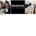 Programme Photo documentaire et photojournalisme avec Magnum Photos - <p>L'agence Magnum Photos et l'école photo Spéos se sont associés pour créer un programme unique de «Photo documentaire & photojournalisme» à Paris en 1 an, destiné aux étudiantsqui souhaitentpoursuivre une carrière dans la photographie documentaire et/ou dans le photojournalisme, dans la tradition de narration visuelle de Magnum.</p> <p>Le programme permet aux élèves d'acquérirles basesnécessaires au développement d'une réflexion critique sur la photographie documentaire, tout en fournissant des conseils techniques ainsi qu'un soutien pédagogique pour développerla pratique individuelle.</p> <p>Les élèves ontun contactprivilégiéavec les photographes de Magnum et son équipe expérimentée.Une partiedes cours estdispensée au sein de l'agence Magnum, située en plein cœur de Paris.</p>