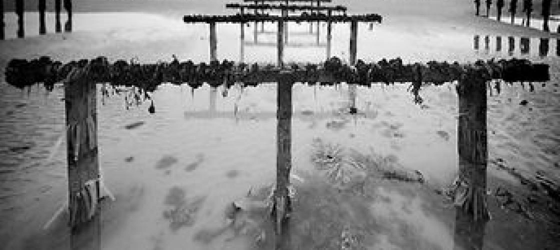 Photographie de Bruno Mercier en Noir & Blanc